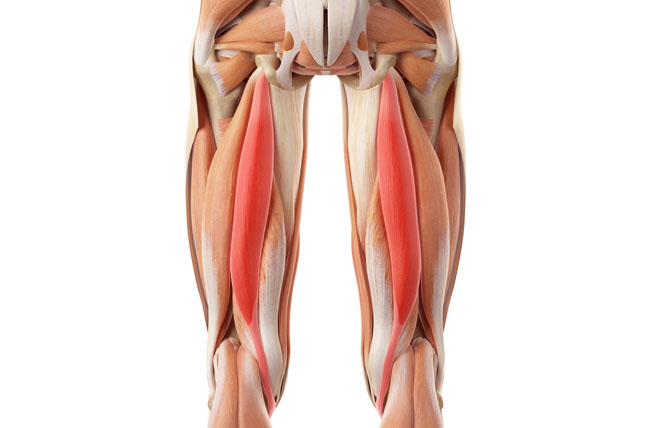 How to pump the hamstrings