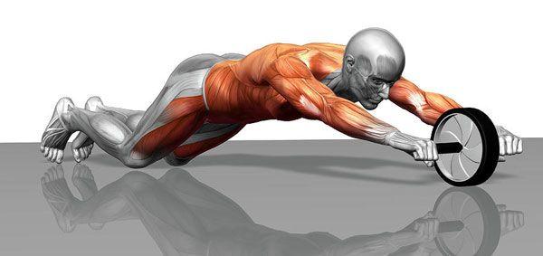 gymnastic roller